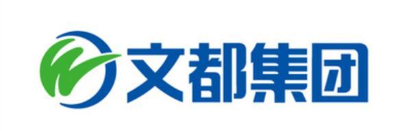 文都教育双师课堂.jpg